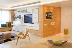 רהיטים - דירה בתל אביב