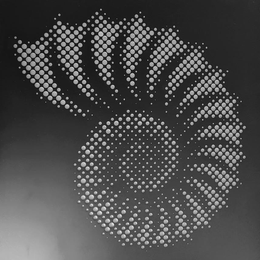 מנדלה שחור לבן - שבלול
