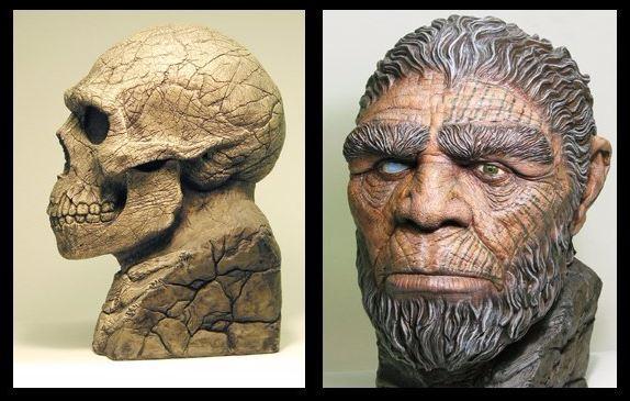 Neanderthal-Spinmaster