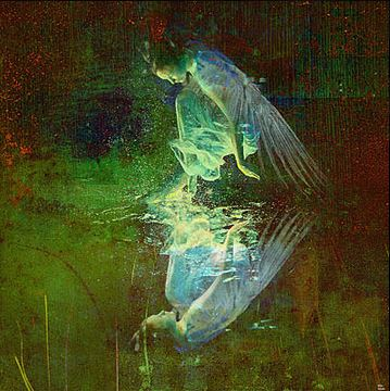 The reflection of the angel