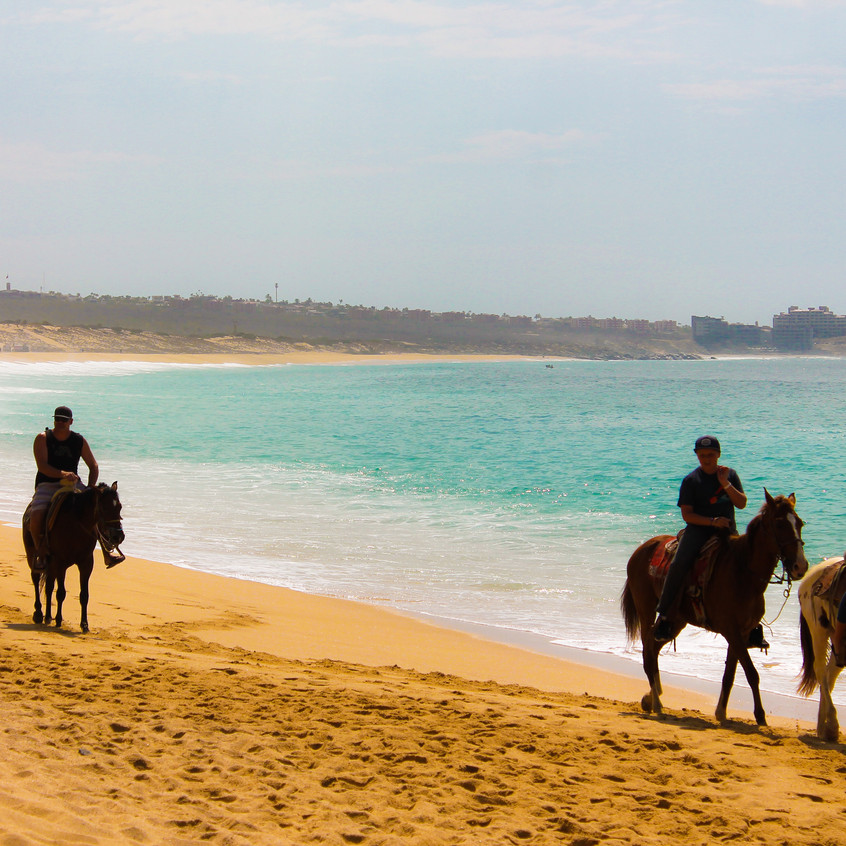 Horseback Rental on the beach