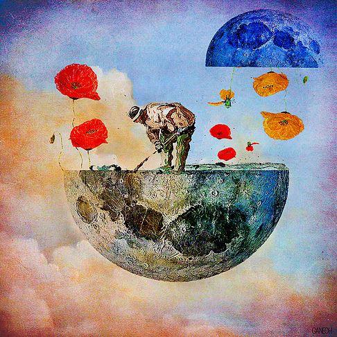 The gardener of the moon