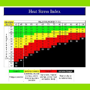 Tips on How to Handle High Heat and Humidity Runs