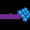 לוגו מטריקס