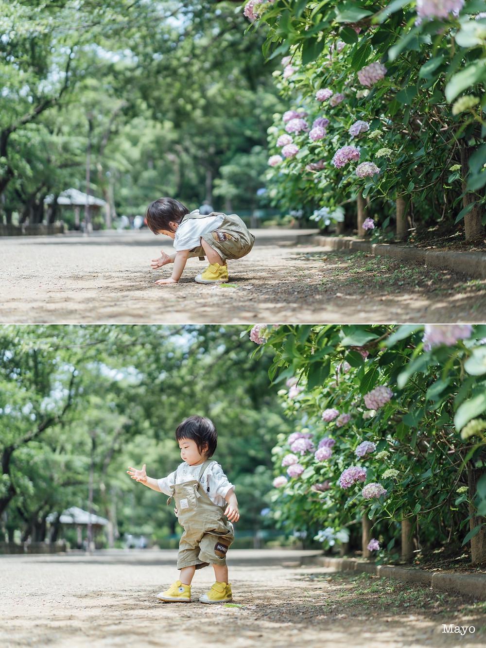 武蔵小杉・川崎・横浜|ファミリーフォト・親子撮影・出張撮影