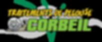 Traitements de pelouse Corbeil