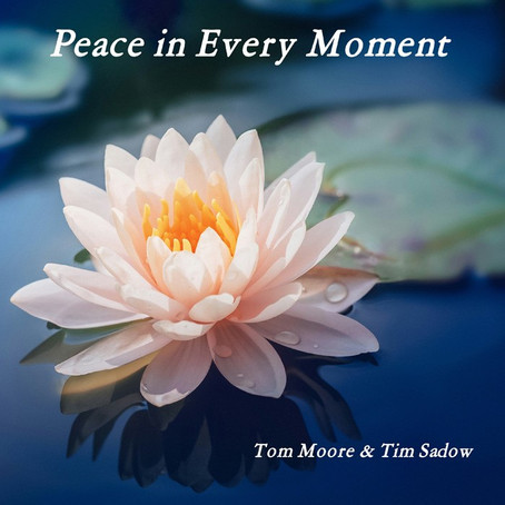 Peace in Every Moment - Tom Moore & Tim Sadow