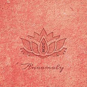 ANAAMALY - UrbanMetta Vol. 2