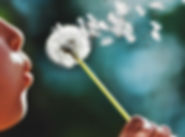 dandelion-wish.jpg