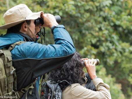 Floresta Estadual José Zago convida a todos para o seu primeiro Vem Passarinhar RJ
