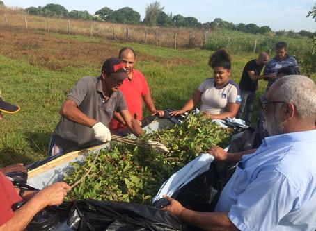 Assentamento em São Pedro da Aldeia recebe treinamento para manejo de Aroeira