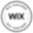 Wix partner-Come and Click Eauze.png