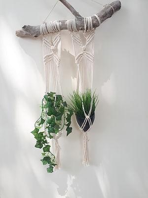 suspension duo plantes vertes.jpg