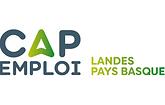 logo cap emploi.png