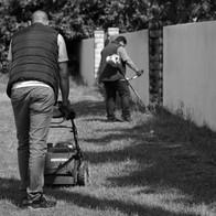 Landes nettoyage - entretien jardins.jpg
