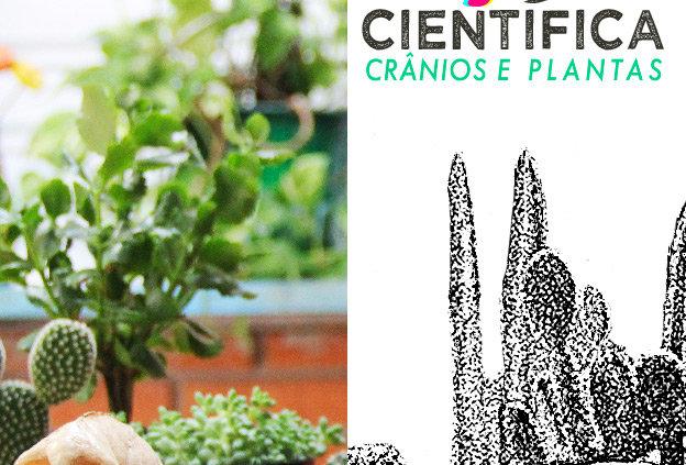 Ilustração Científica - PLANTAS e CRÂNIOS 27/04 e 28/04