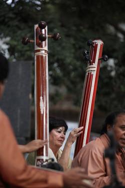 Ustad Wasifuddin Dagar Indien.jpg