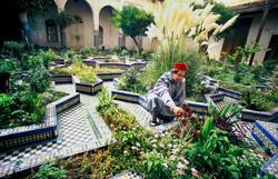 Garden of Ba Mohamed Chergui