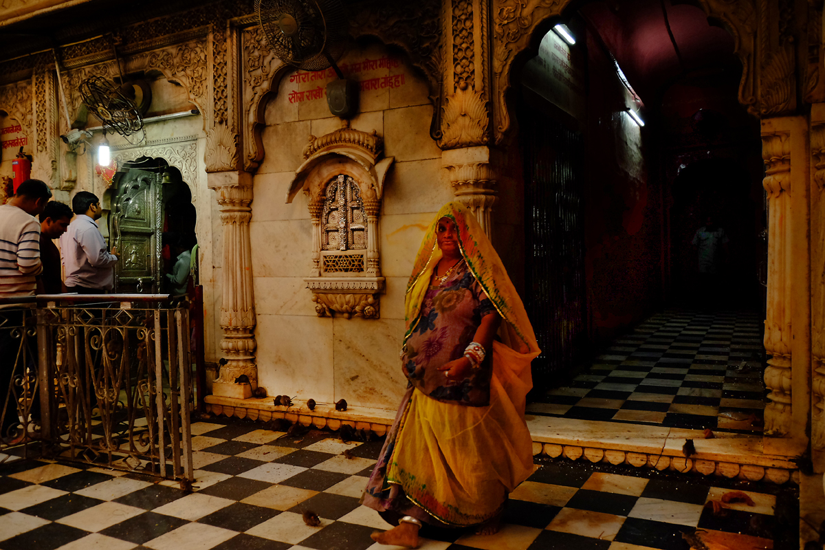 Karni-Mata-Temple, Bikaner