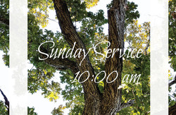 service times summer tree