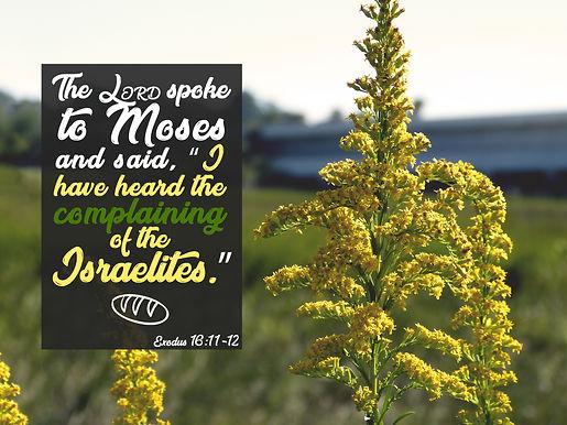 God Still Speaks!