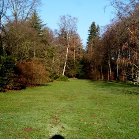 Parkanlagen: Bunter Garten - Das Grüne Herz von Mönchengladbach