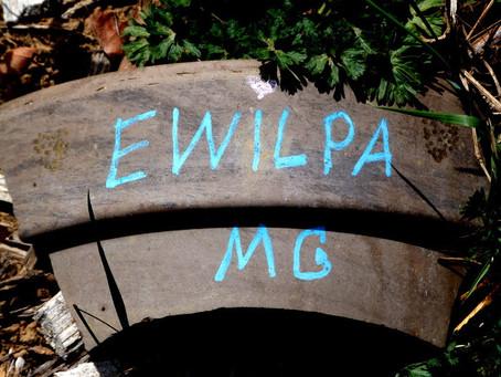 Ewilpa: Kräuterspirale