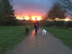 client with dogs