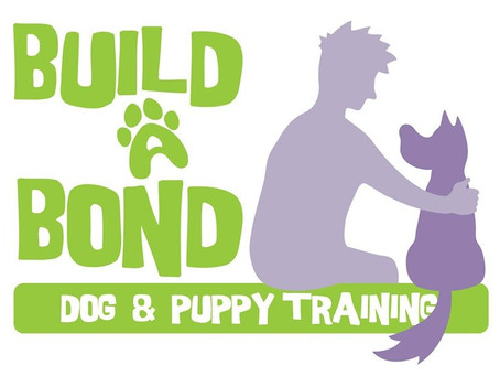 Why did I Start Build A Bond dog training?