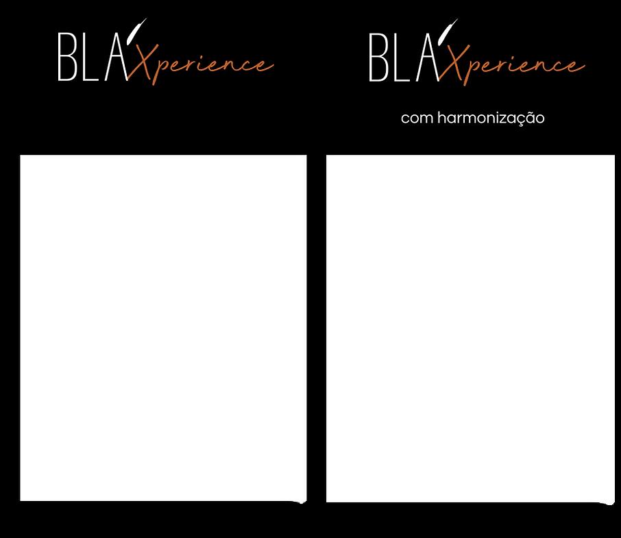 Blaxperience.png