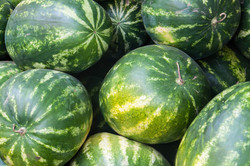 bigstock-Watermelon-Is-Sold-At-The-Baza-90952598