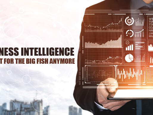 Business Intelligence- Not Just For The Big Fish Anymore