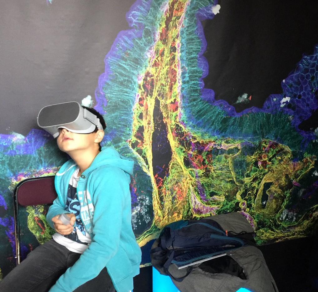 digestion en realite virtuelle.jpg