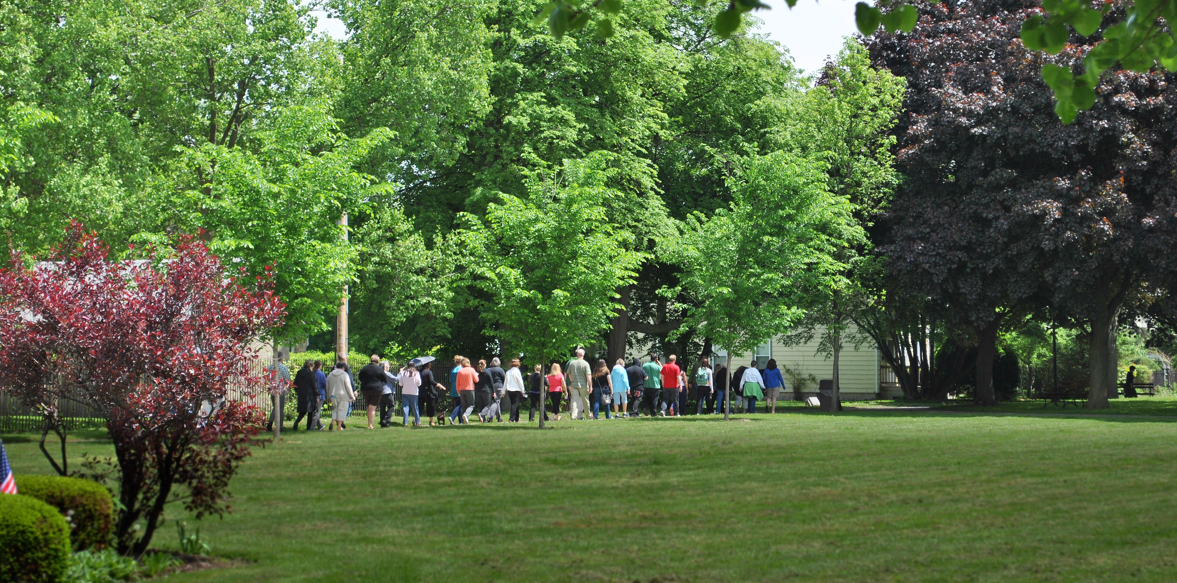 long line of walkers4.jpg