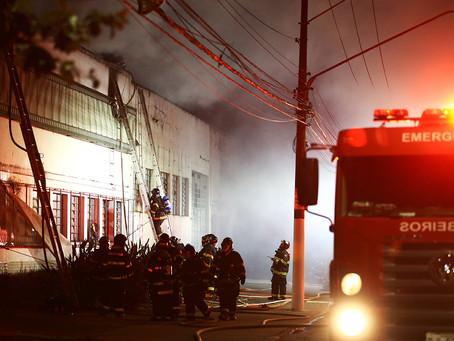 A Cinemateca arde: uma tragédia anunciada