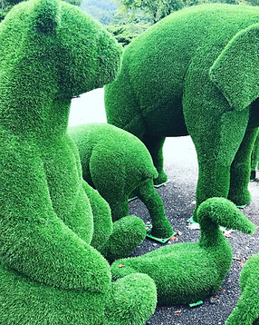 ARTIFICIAL GRASS TOPIARY