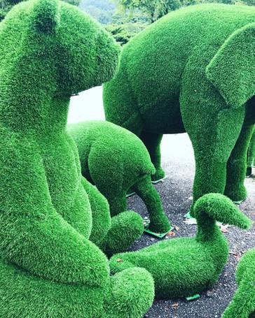 ARTIFICIAL GRASS TOPIARY