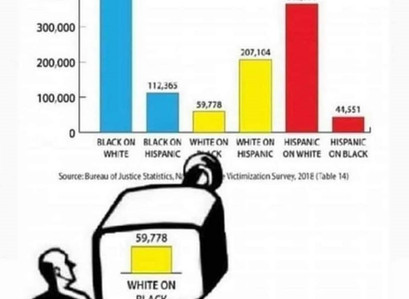 The Color of Crime & Victimization Rates
