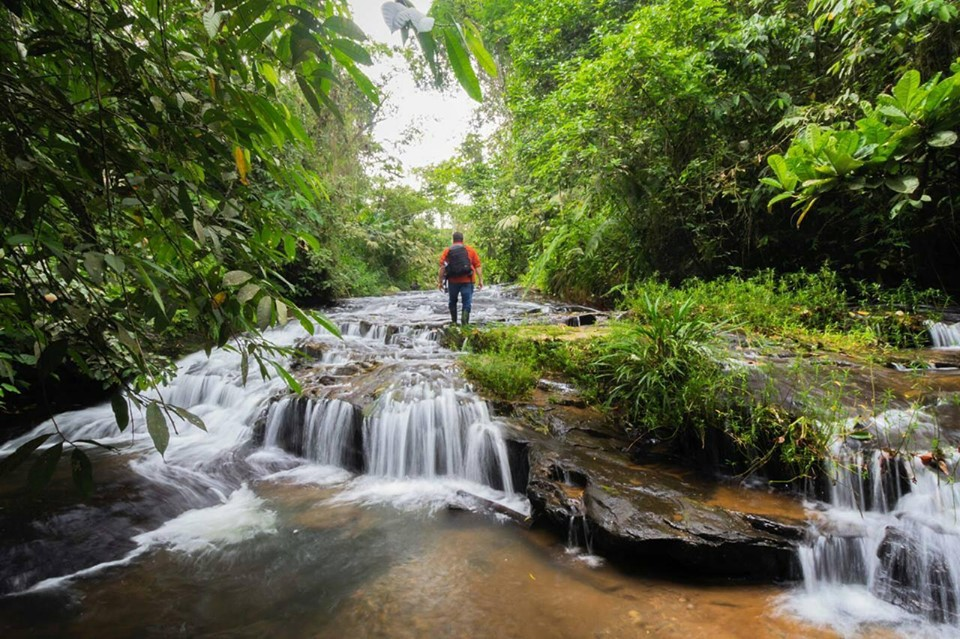 ruta cascadas de yanayaku