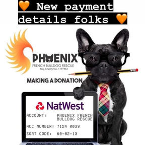 Phoenix Bank Details.jpg