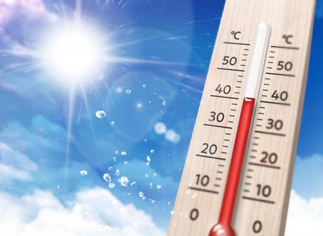 8/25  まだまだ暑い日が続きます