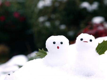 1/12 雪ですね!