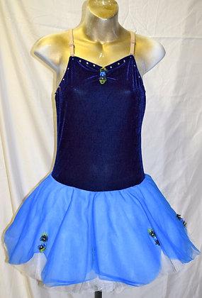 Adult Vintage Revolution Dancewear Size LA