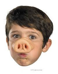 Theatrical Costumes Pig Nose