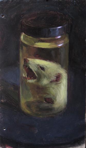 ermine specimen