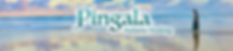Pingala Youtube Banner copy.png