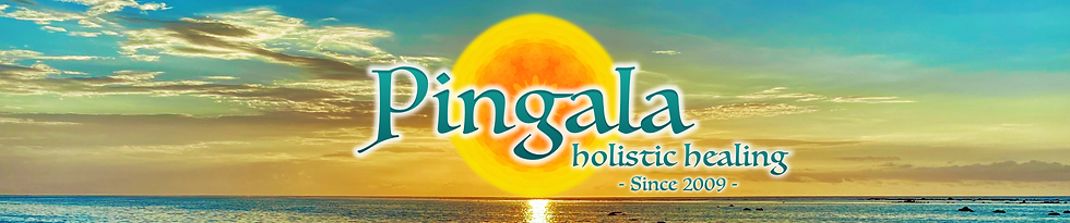 Pingala Banner Website.png