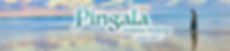 Pingala Youtube Banner.png