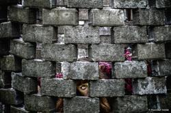 Female figure behind wall of bricks