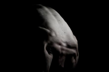 Body Sculpure Series